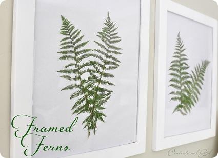 Cuadros de plantas y flores secas decoratrucosdecoratrucos - Plantas secas decoracion ...