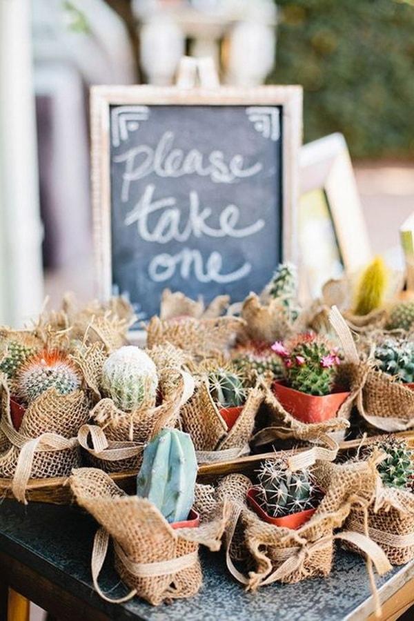 Souvenirs con cactus