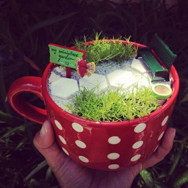 Jardín en miniatura en una taza