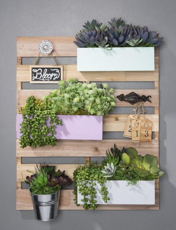 Mini jardín vertical de interior