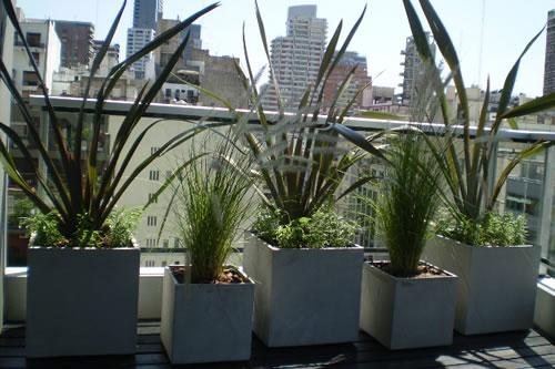 Decorar el bancón con plantas