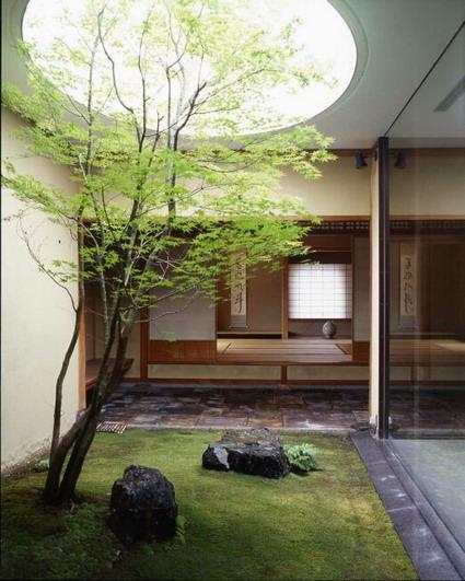 decoracion plantas2