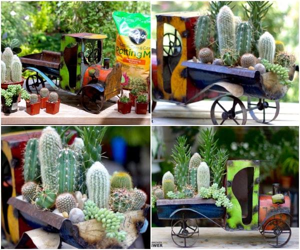 Proyecto DIY con cactus