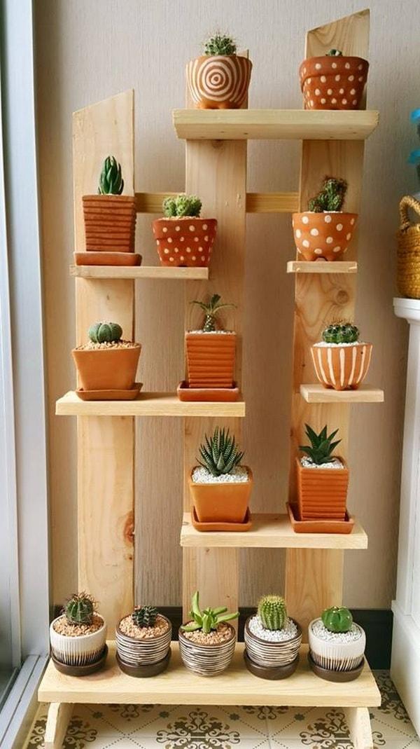 Repisa con palets para colocar cactus