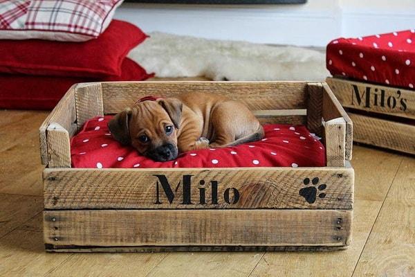 Camas para mascotas hechas con cajas de madera