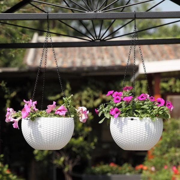Cestas colgantes para colocar plantas